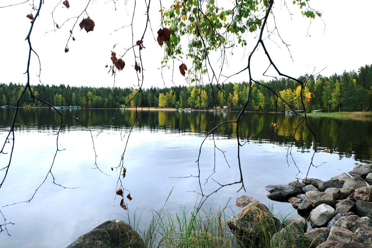 Озеро Сайма - Ольга Васильева
