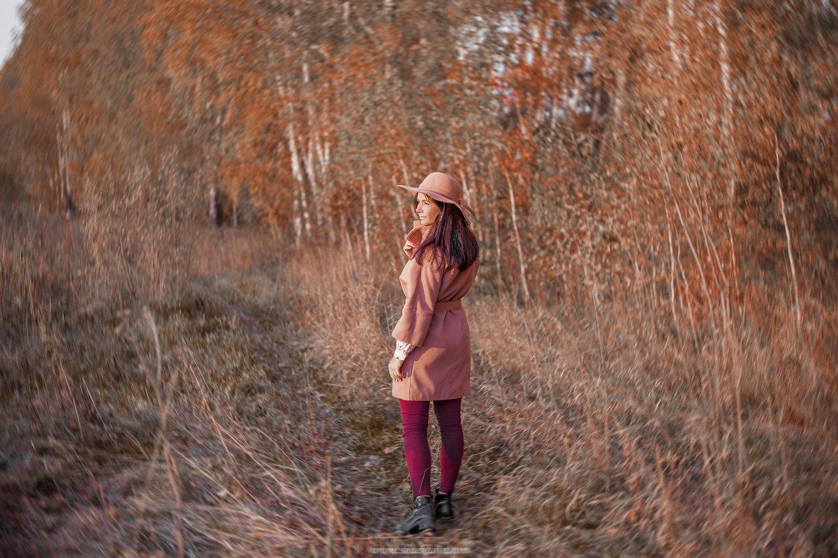 Глядя в даль - Анастасия Шаехова