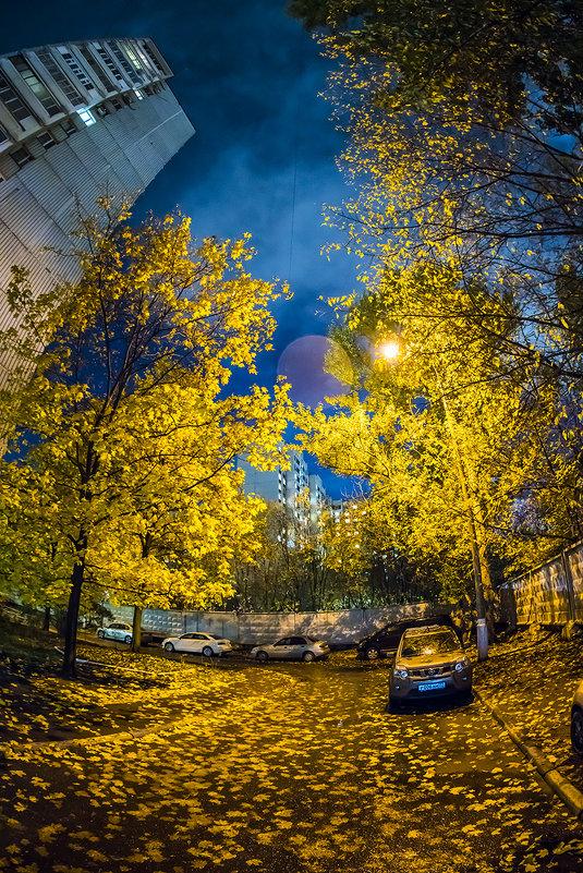 Москва, Нагатинский затон, осенний вечер. - Игорь Герман