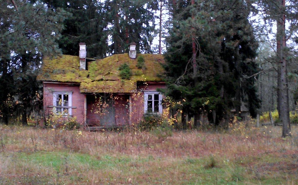 Старый дом - Наталия Зыбайло