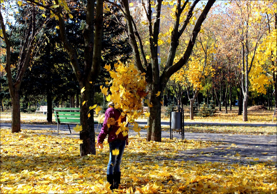 Купаясь в золотой листве - Татьяна Пальчикова