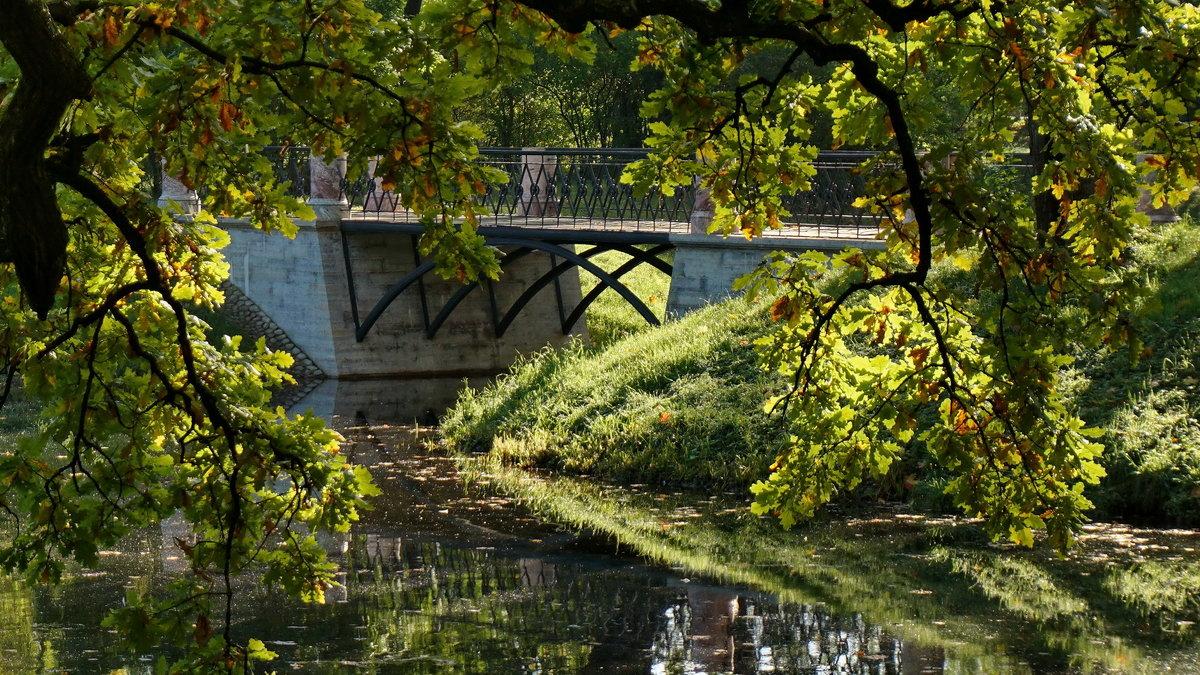Спрятавшийся мостик - Владимир Гилясев