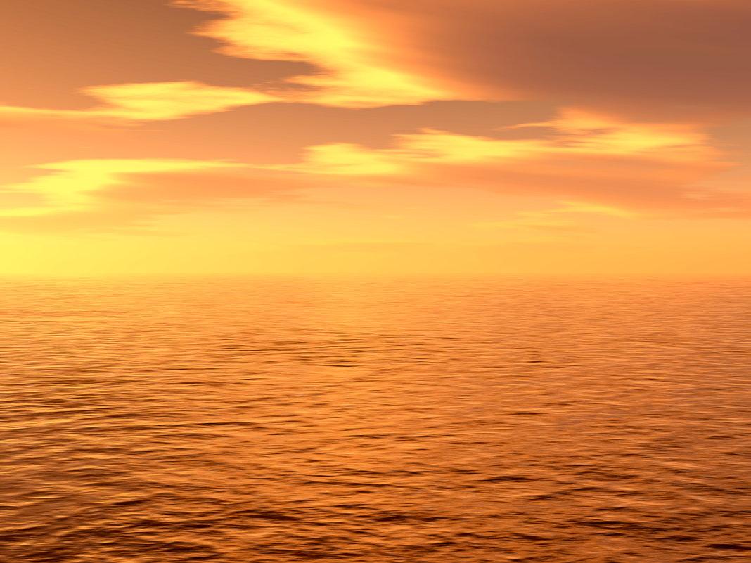 море солнца и тепла - linnud