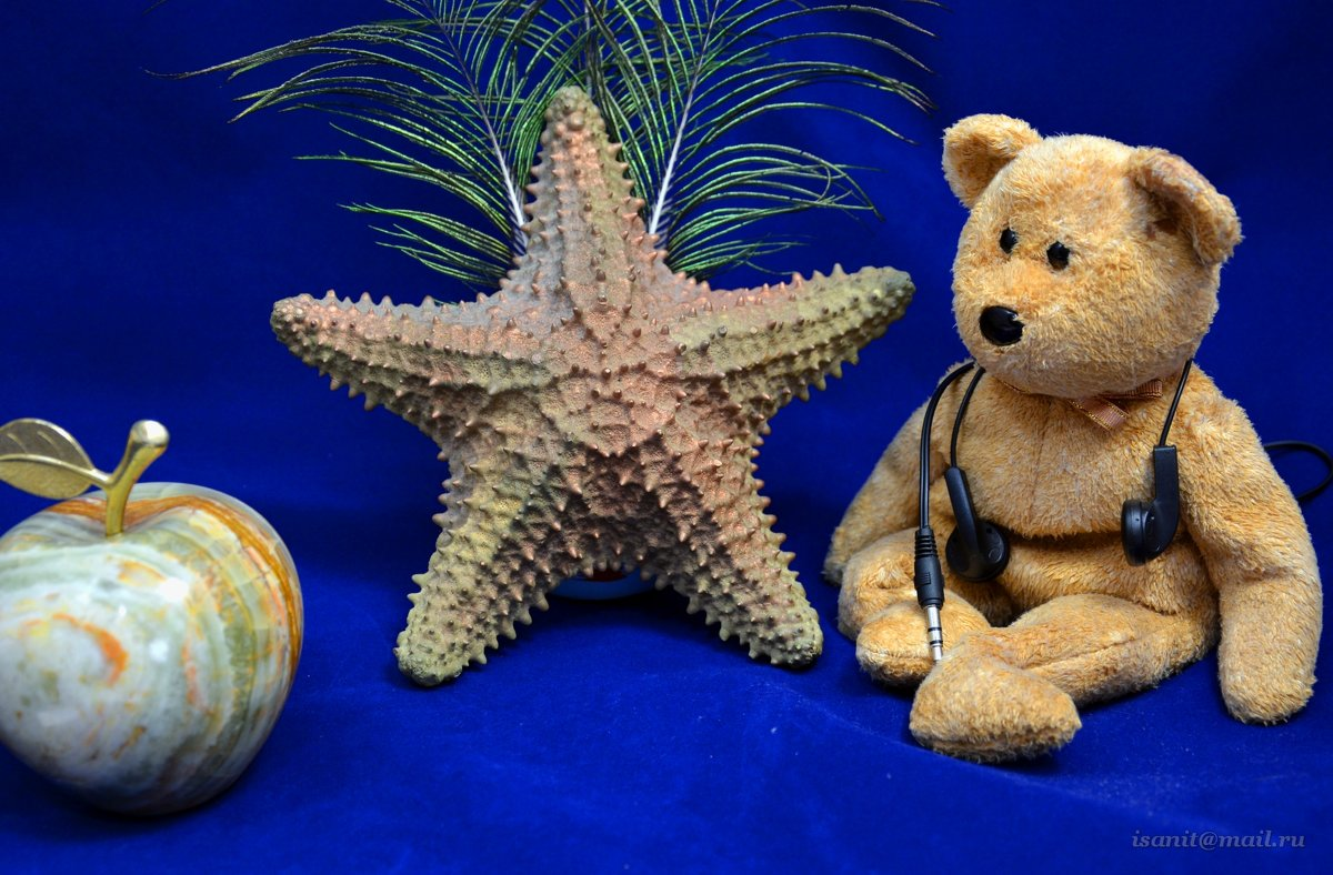 Натюрморт со звездой - isanit Sergey Breus