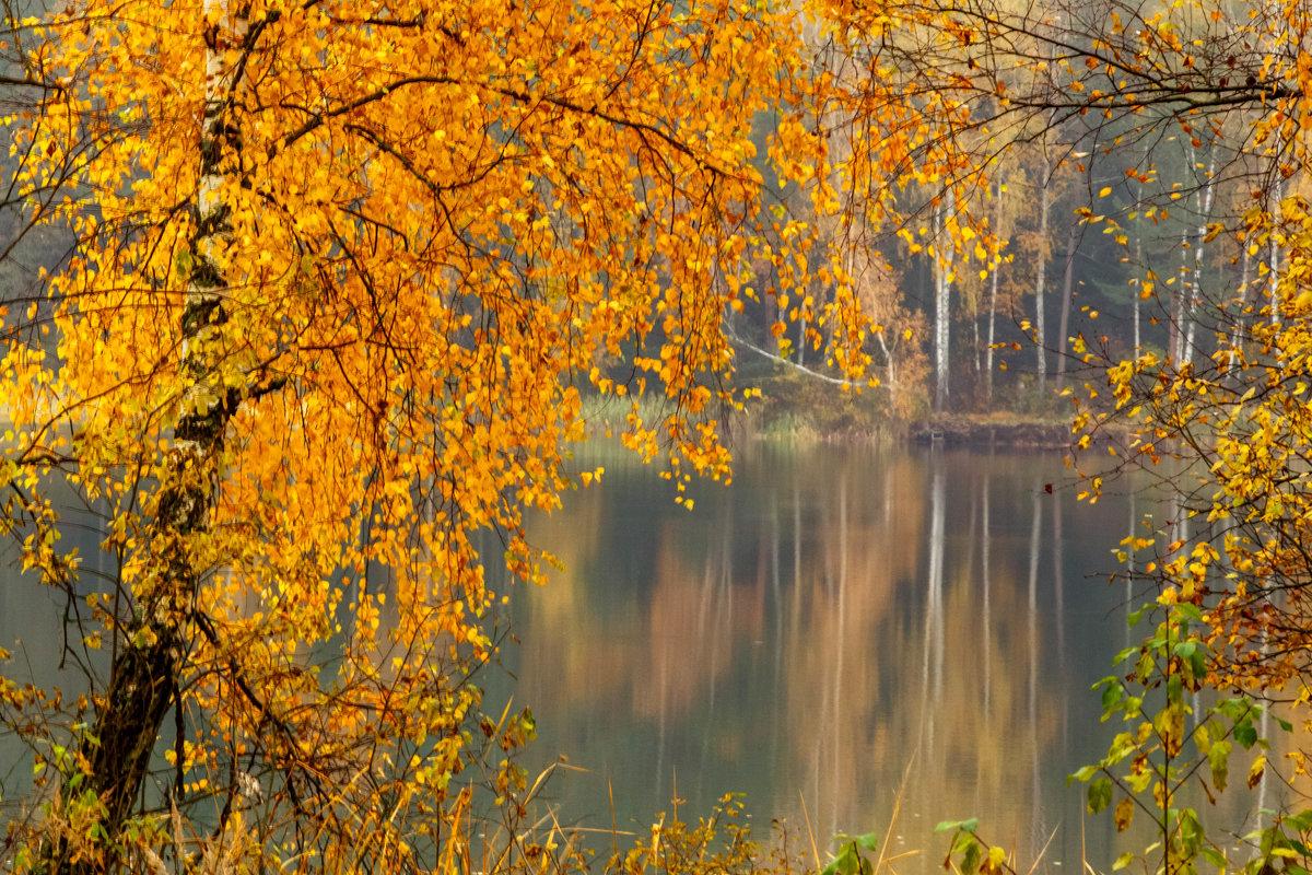 Осень - Татьяна Баценкова