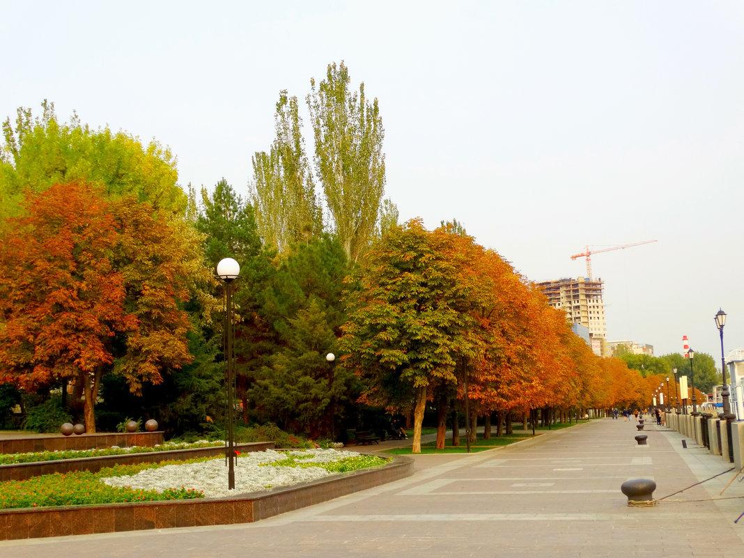 Октябрь на ростовской набережной... - Тамара (st.tamara)
