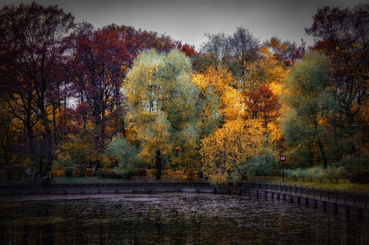 Осень на пруду в парке. - Василий Ярославцев