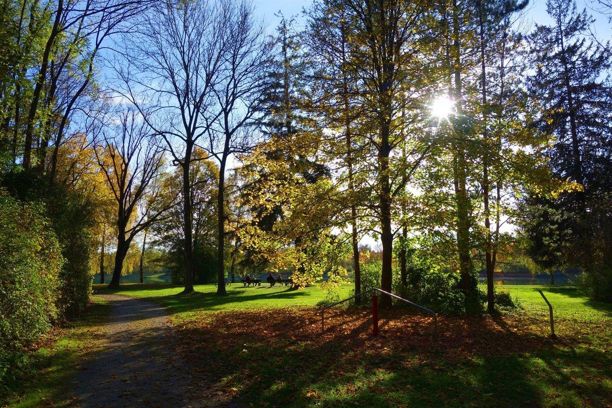 Октябрьское солнышко и светит, и греет... - Galina Dzubina