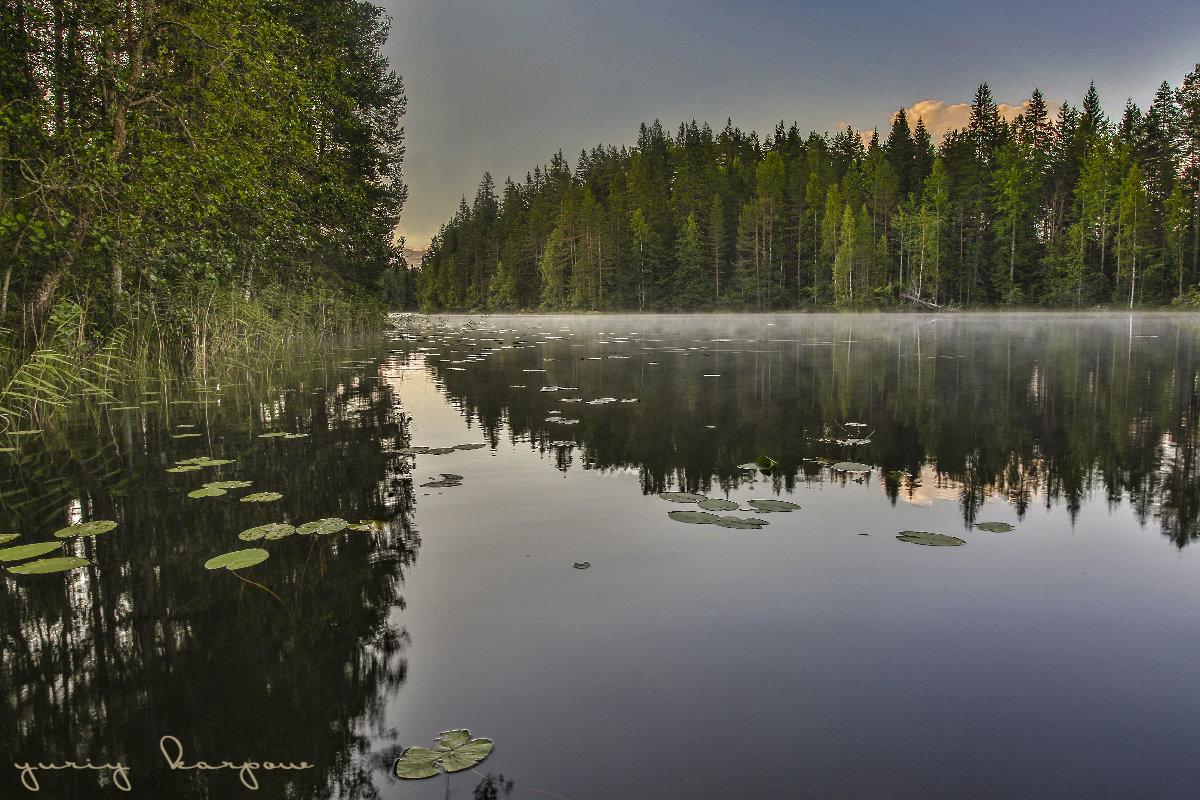 утро на озере - юрий карпов