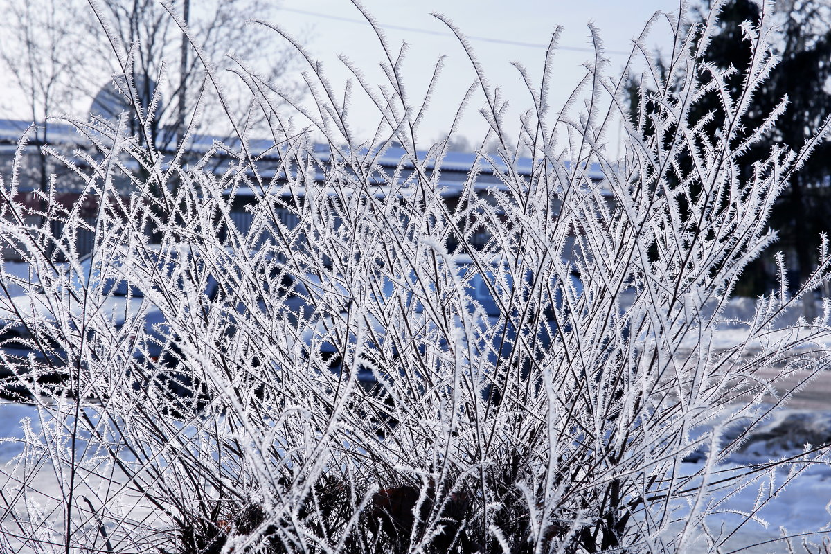 Зима - Игорь Смолин