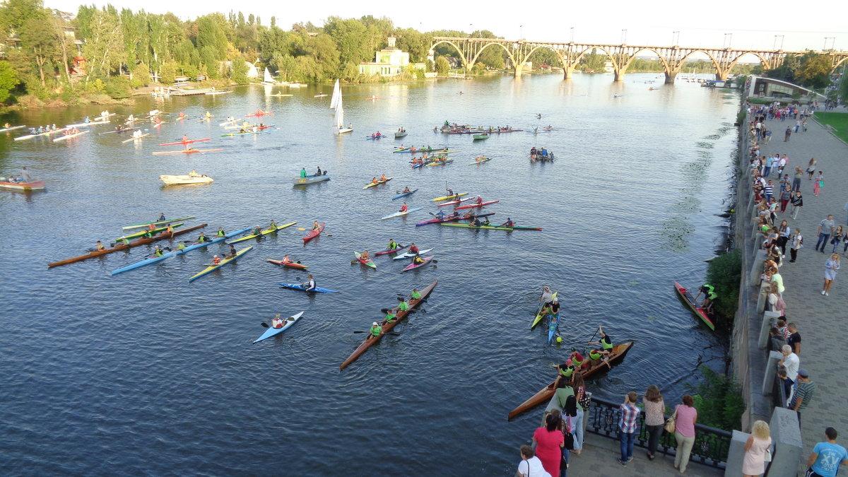 Конно-спортивный праздник на воде!... - Алекс Аро Аро