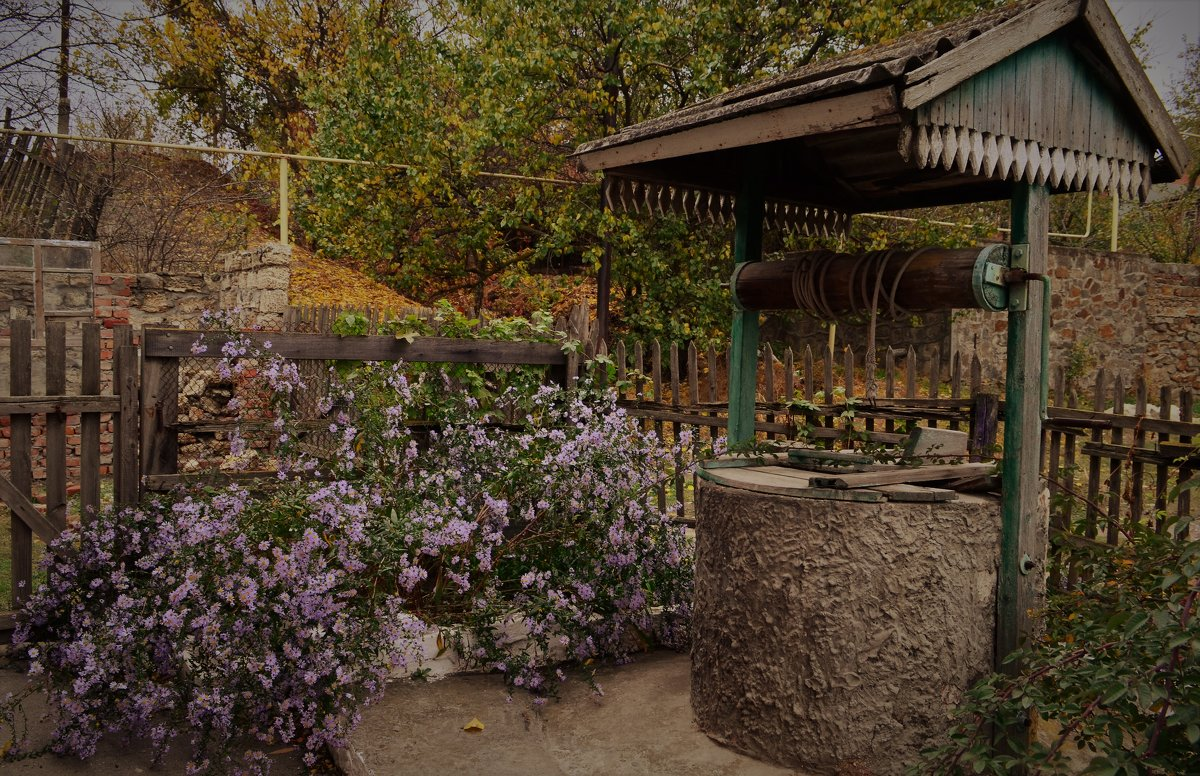 Колодец и цветы. - Лариса Красноперова