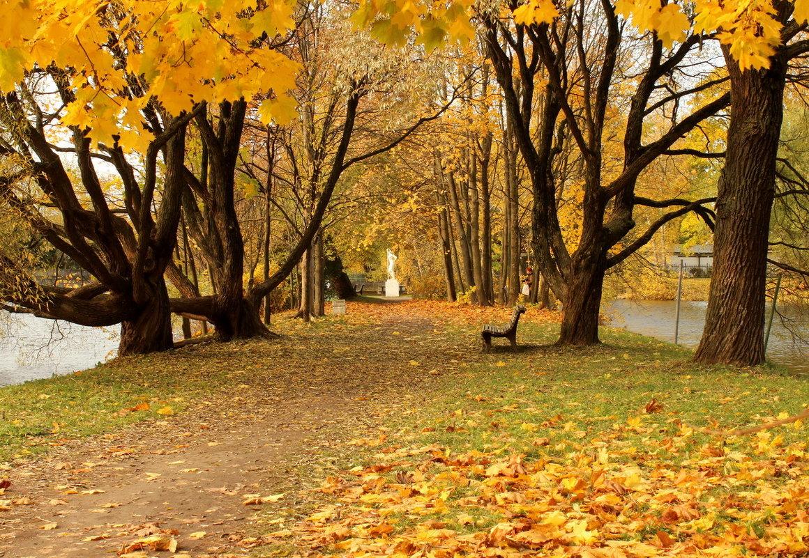 Осень на Каменном острове - Вера Моисеева