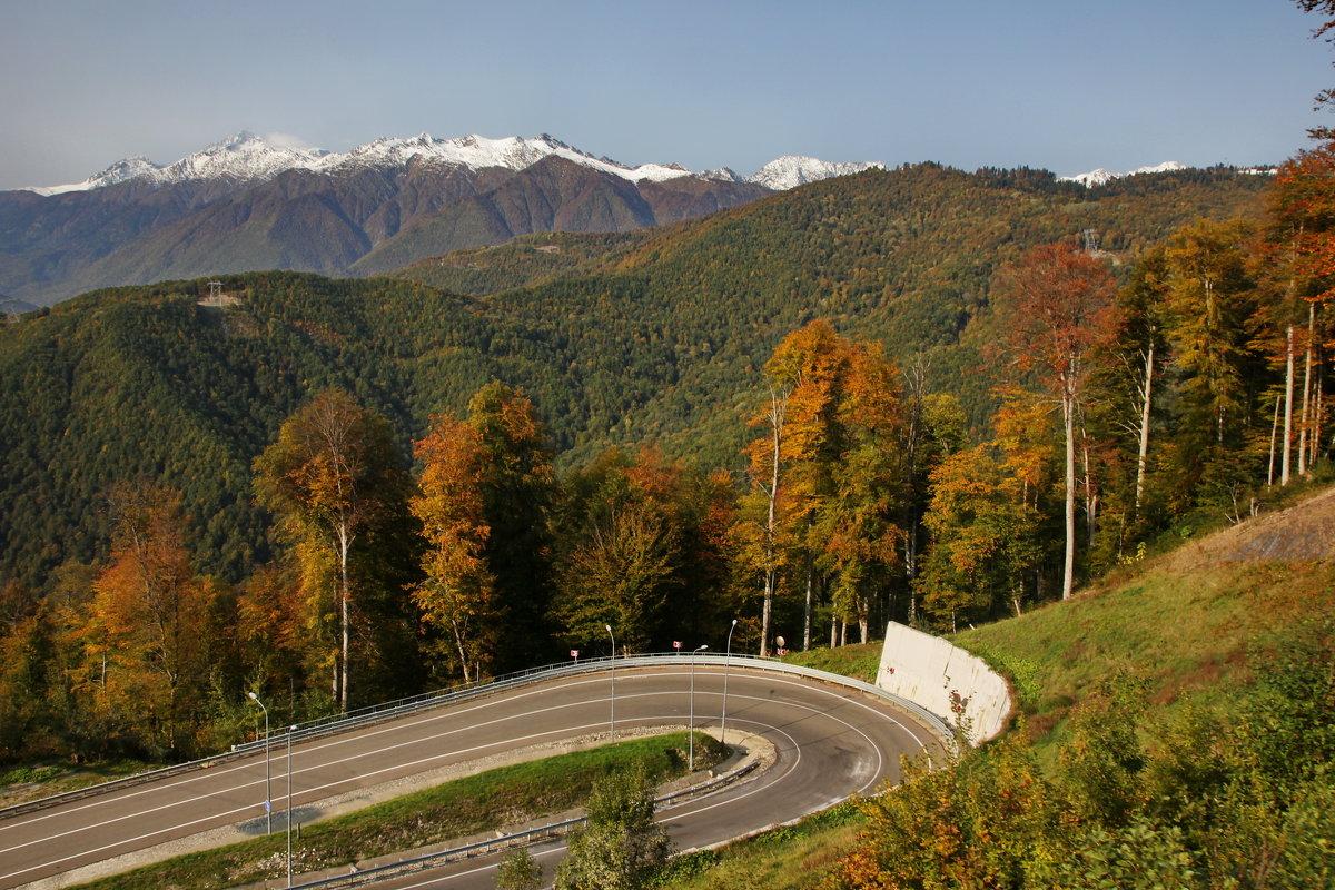 Осень в горах - Виолетта