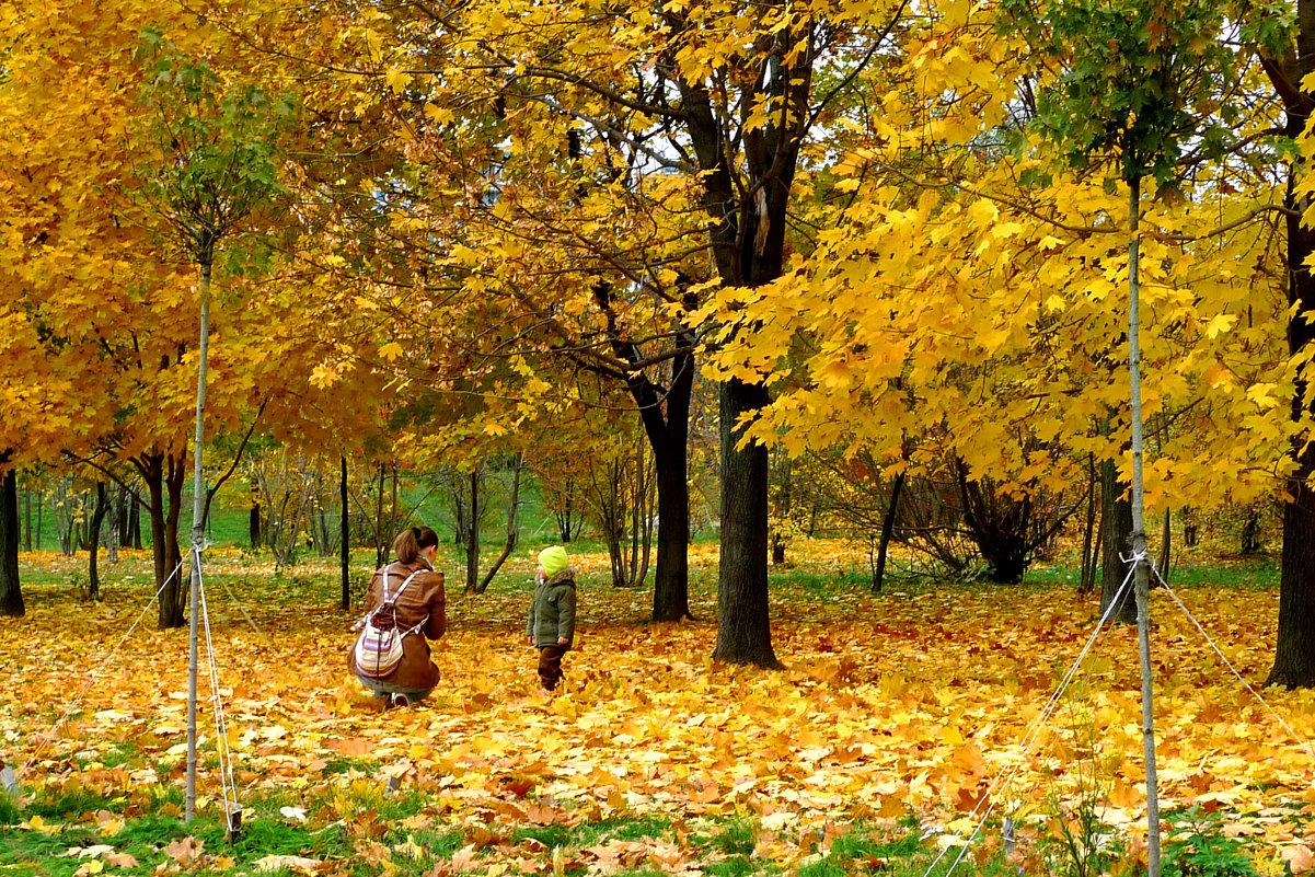 Осеннее фото. - Александр Атаулин