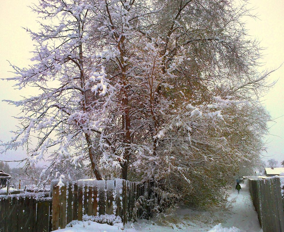 Первый снег - Милла Корн