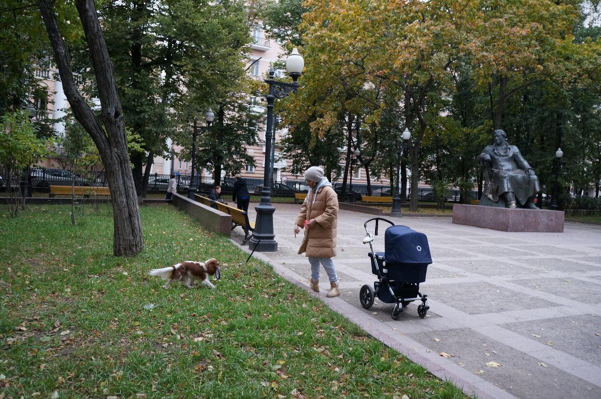 Осенние прогулки ... - Алёна Савина