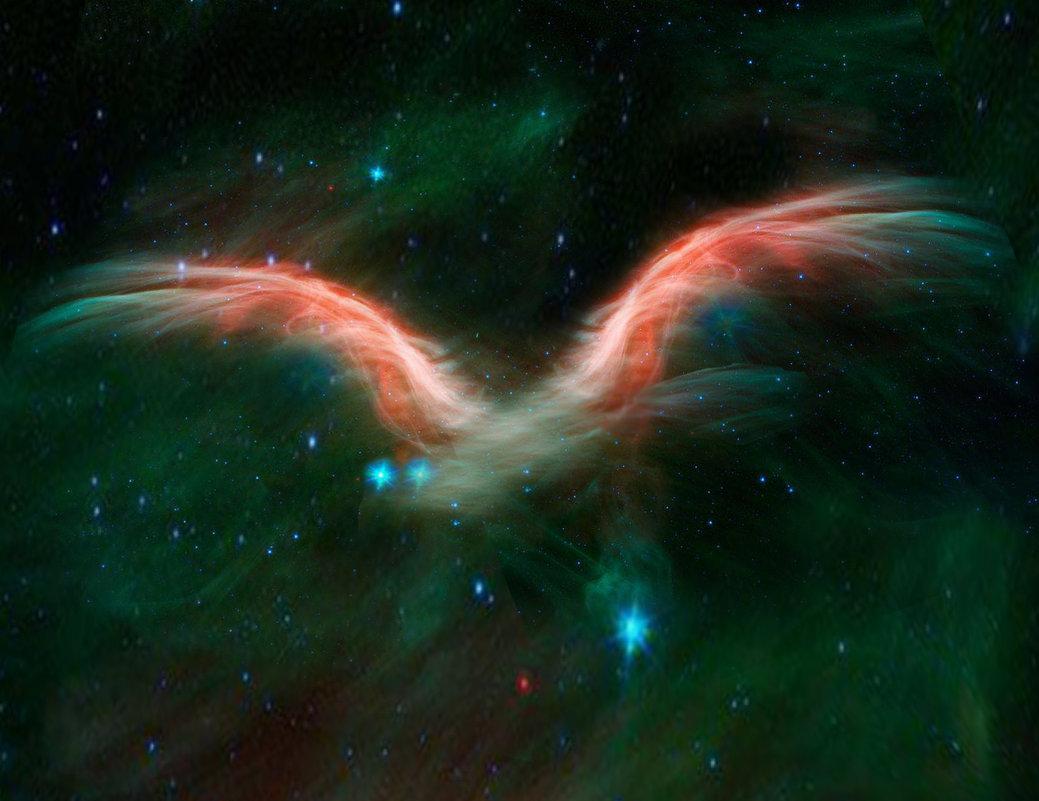 Звездные крылья фантазии! - viton