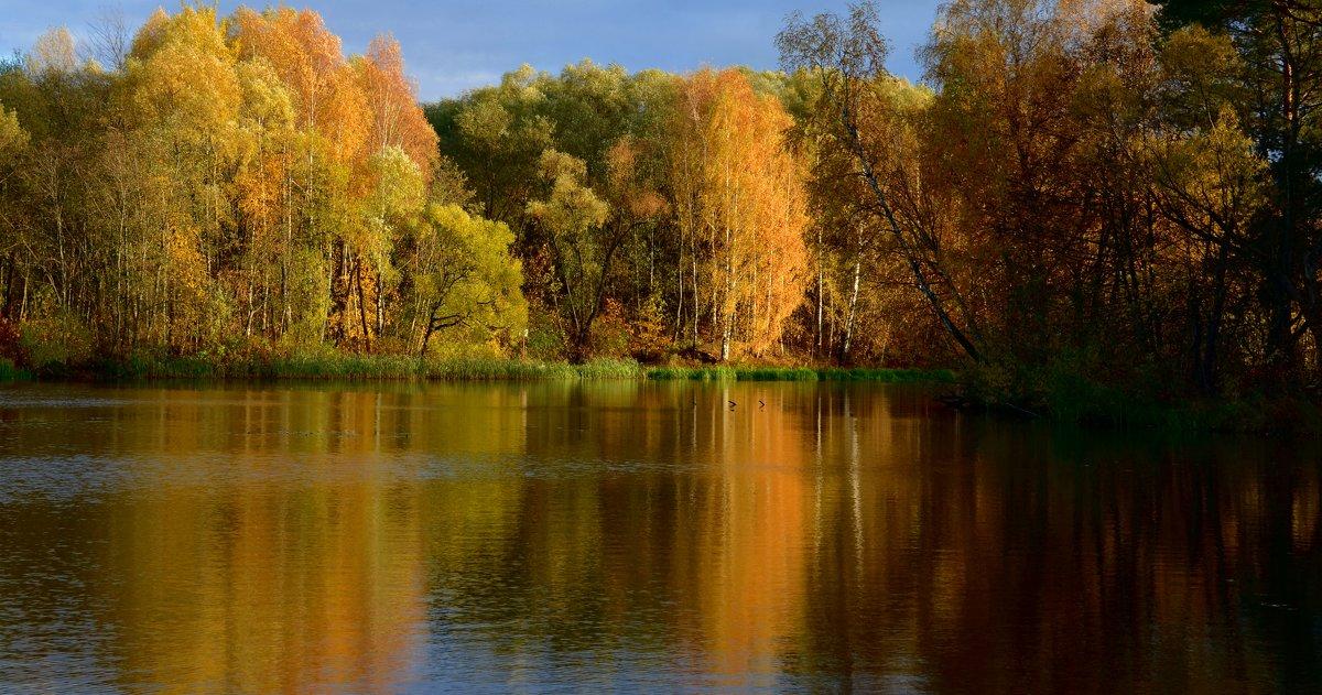 Осенняя живопись... - Ольга Русанова (olg-rusanowa2010)