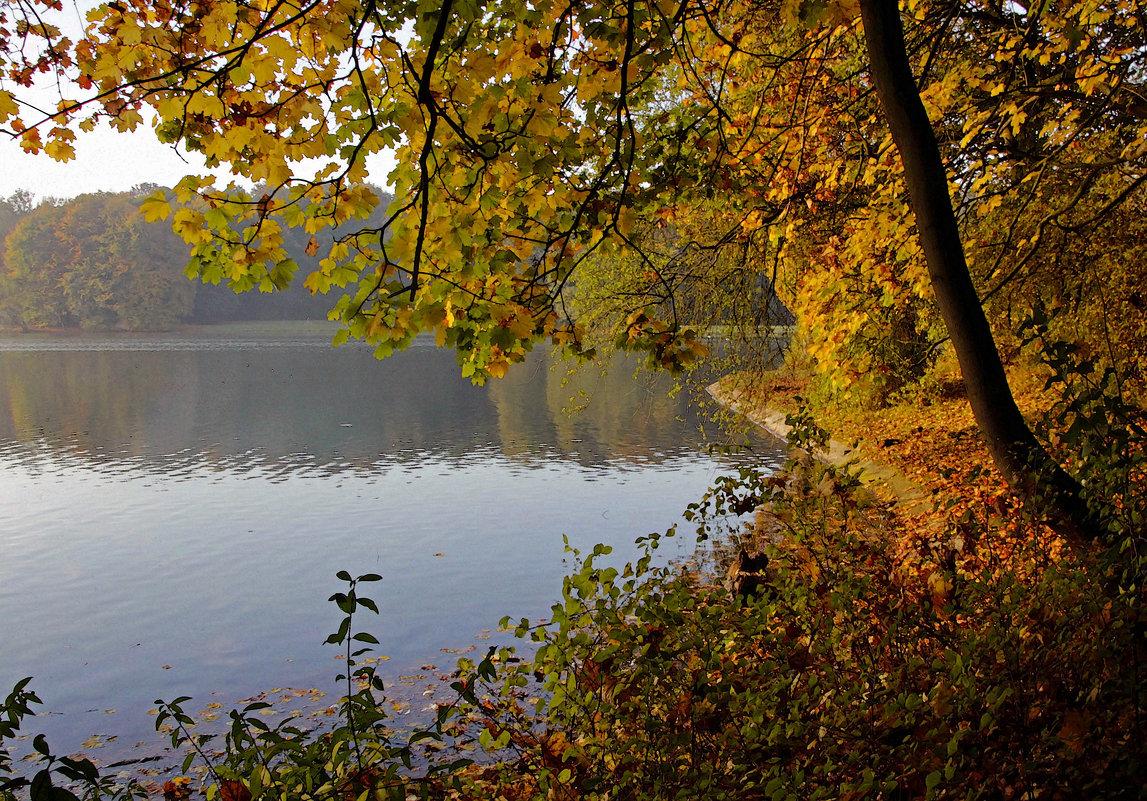У озера - Alexander Andronik