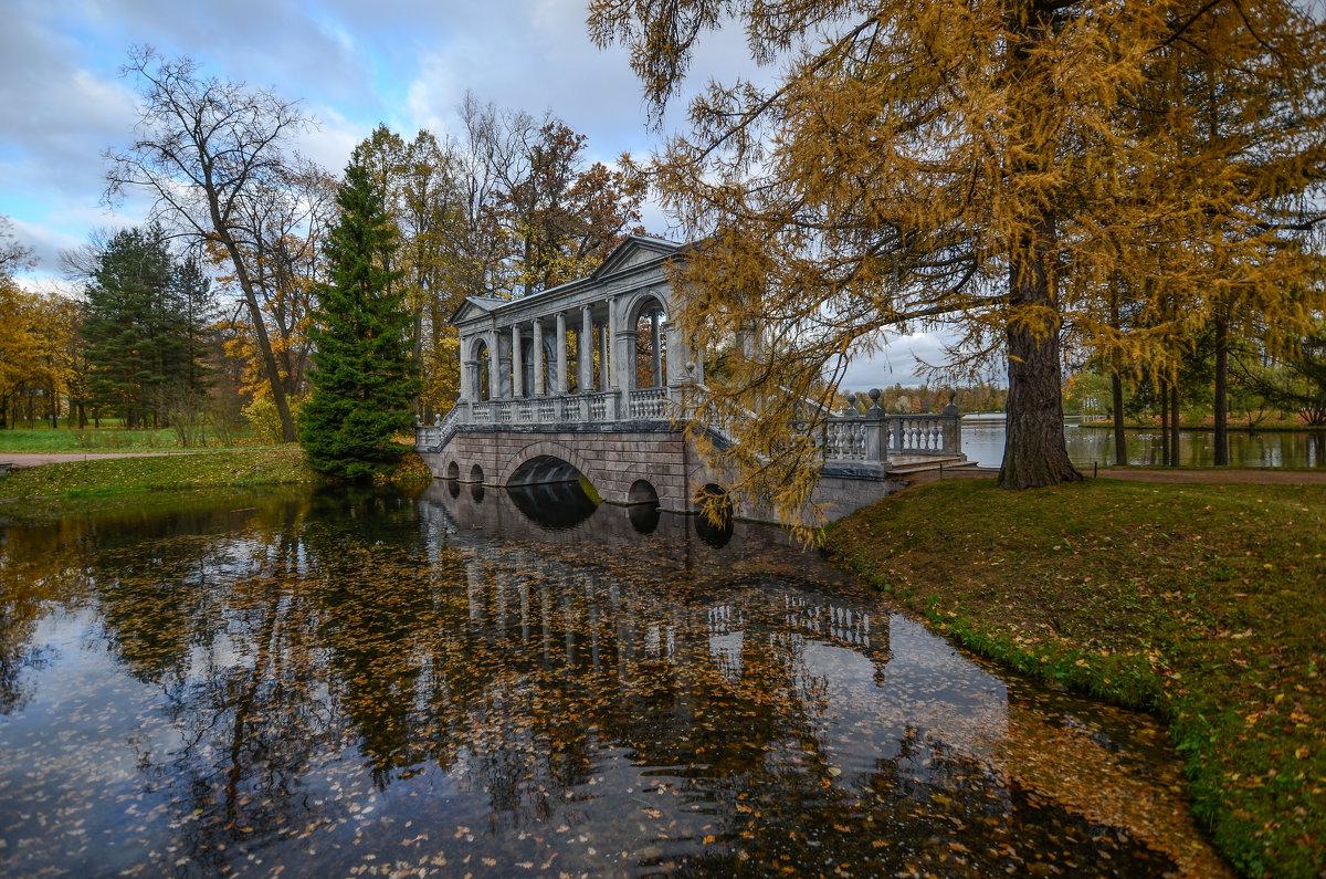 Осень в  Екатерининском  парке - Наталья Левина