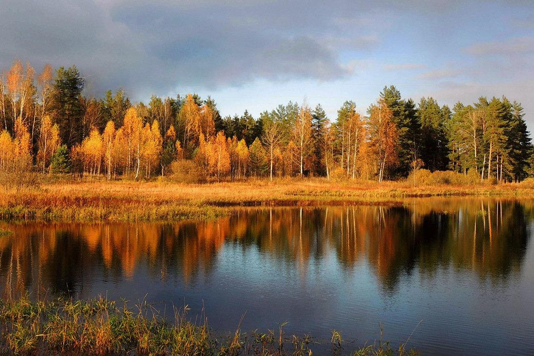 Отражение осени - Павлова Татьяна Павлова