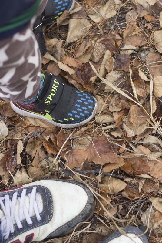 Осенние прогулки - Марина Кириллова