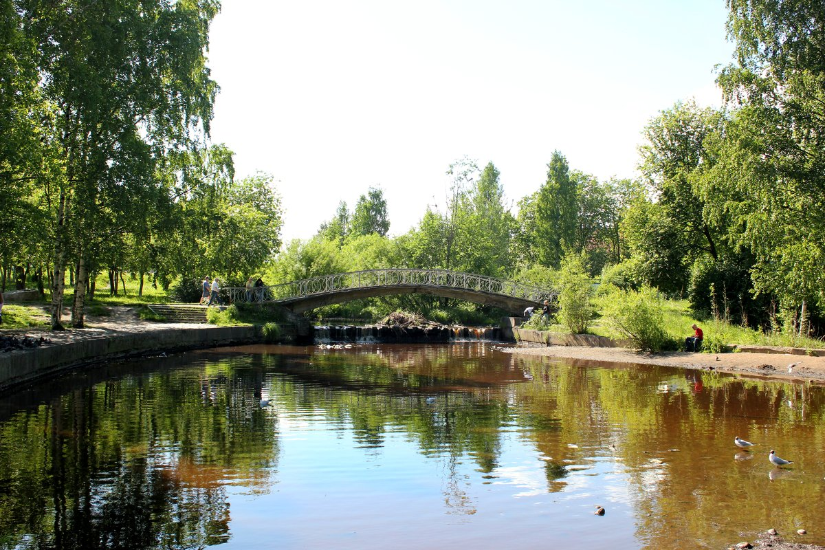 парк - Ольга Зубова