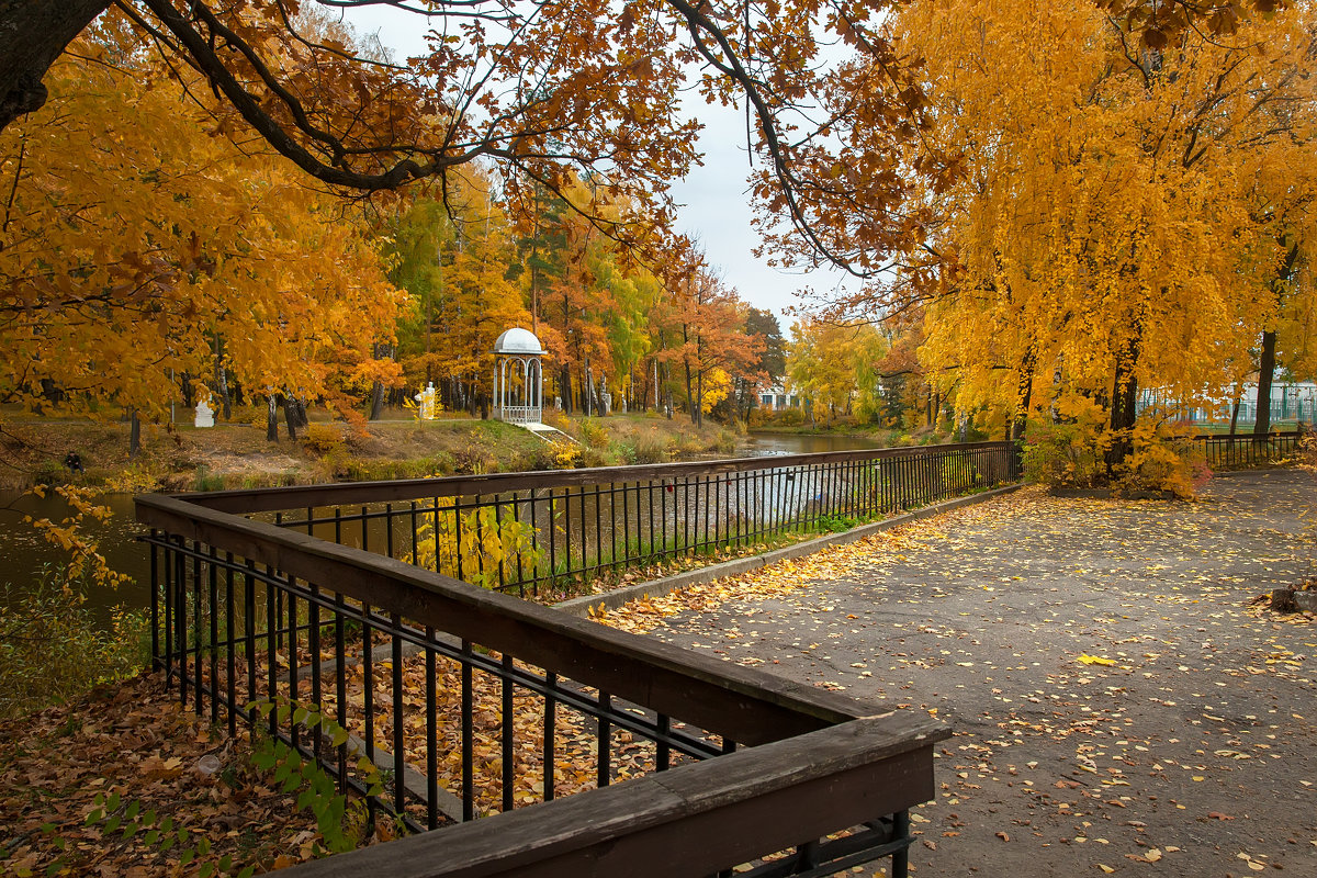 Осенний парк - Владимир