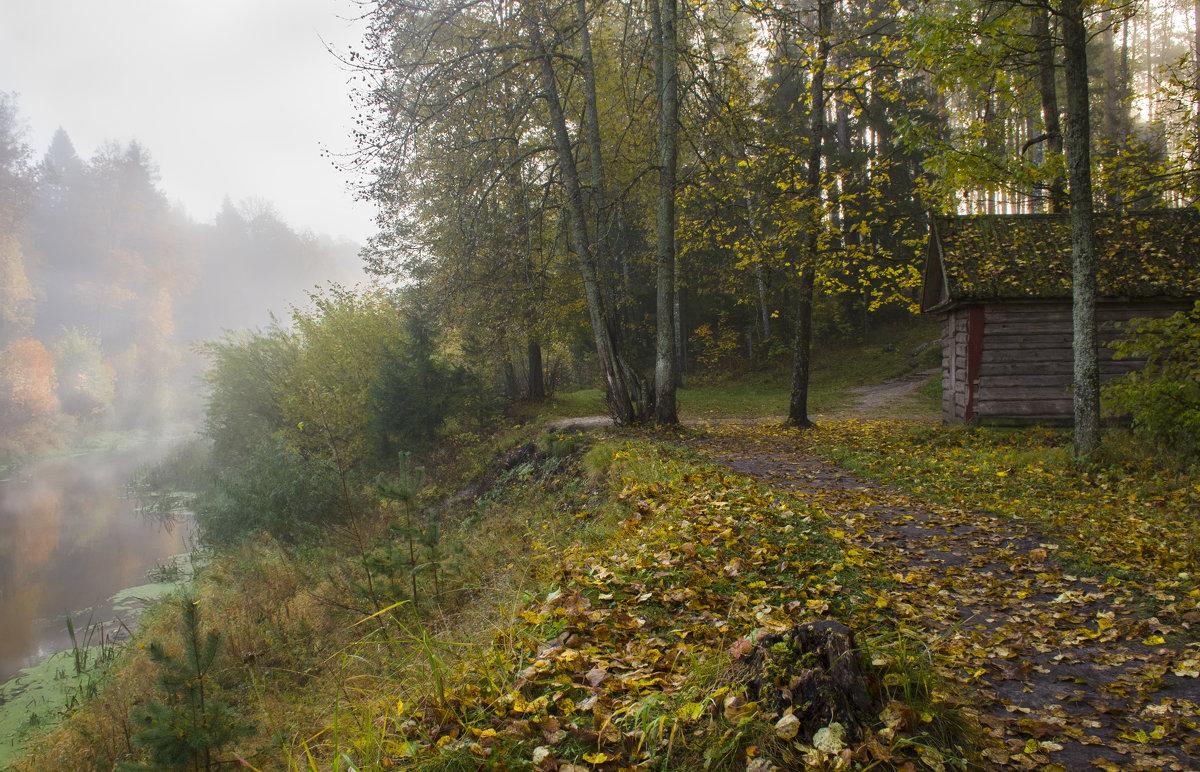 Осень - Лариса Березуцкая