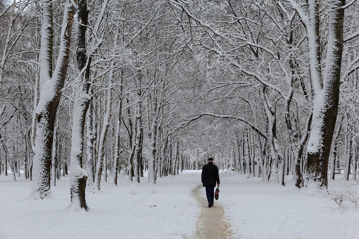По первому снегу - Наталья Кузнецова