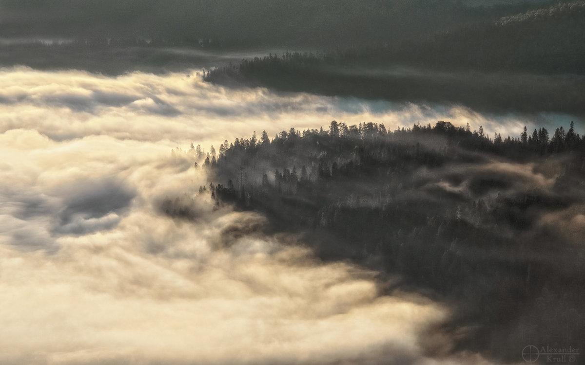 На берегах рассветного тумана... - Александр К.