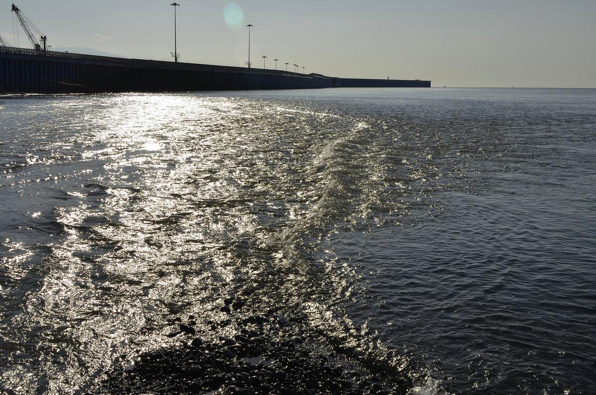Река и море - Светлана Винокурова