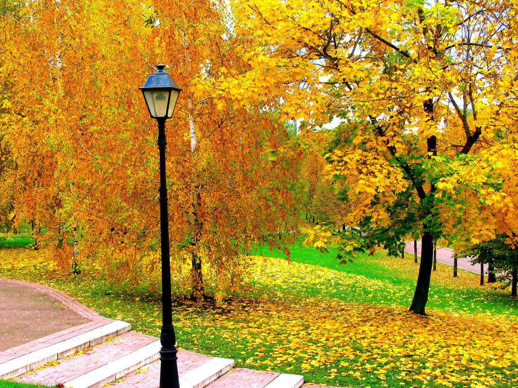 Октябрь. - Владимир Драгунский