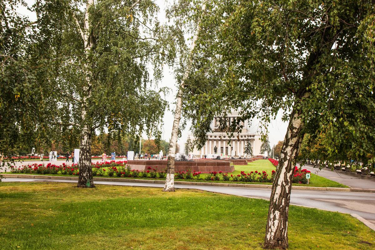 ВДНХ - Владимир Безбородов