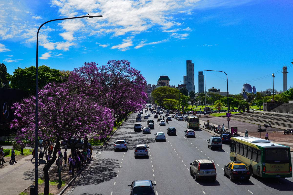 По улицам Буэнос-Айреса - Nataly ***