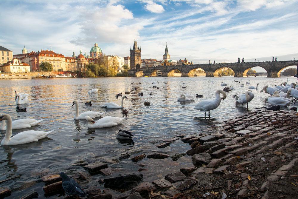 Прага - Олег