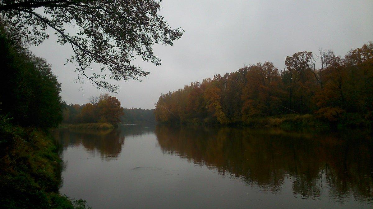 Сумерки на реке - ЕЛЕНА СОКОЛЬНИКОВА
