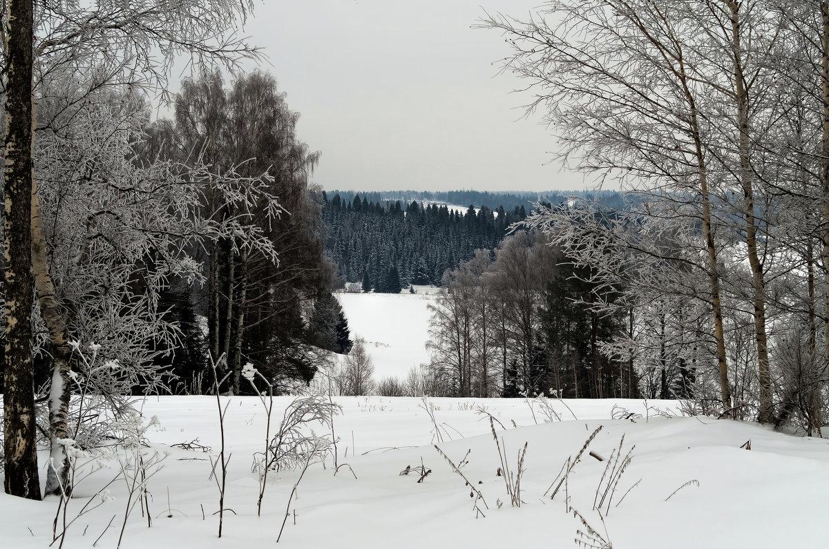 Морозный денёк в окрестностях с. Якшур-Бодья - Владимир Максимов