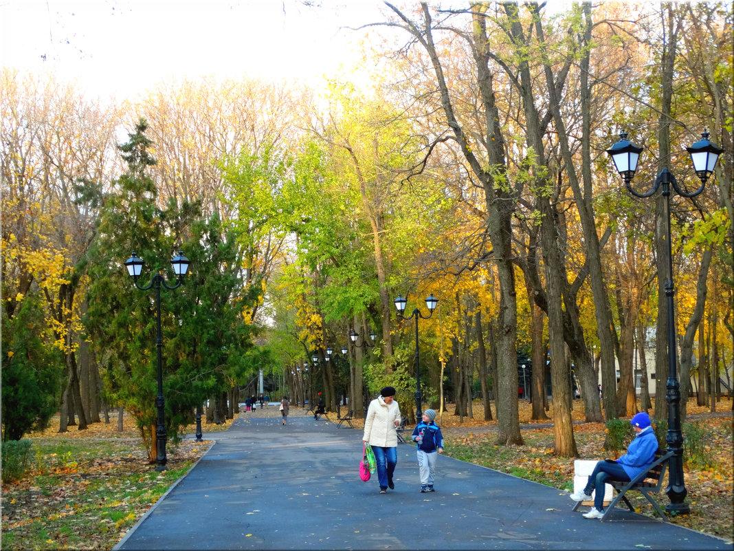 Отдых в осеннем парке... - Тамара (st.tamara)