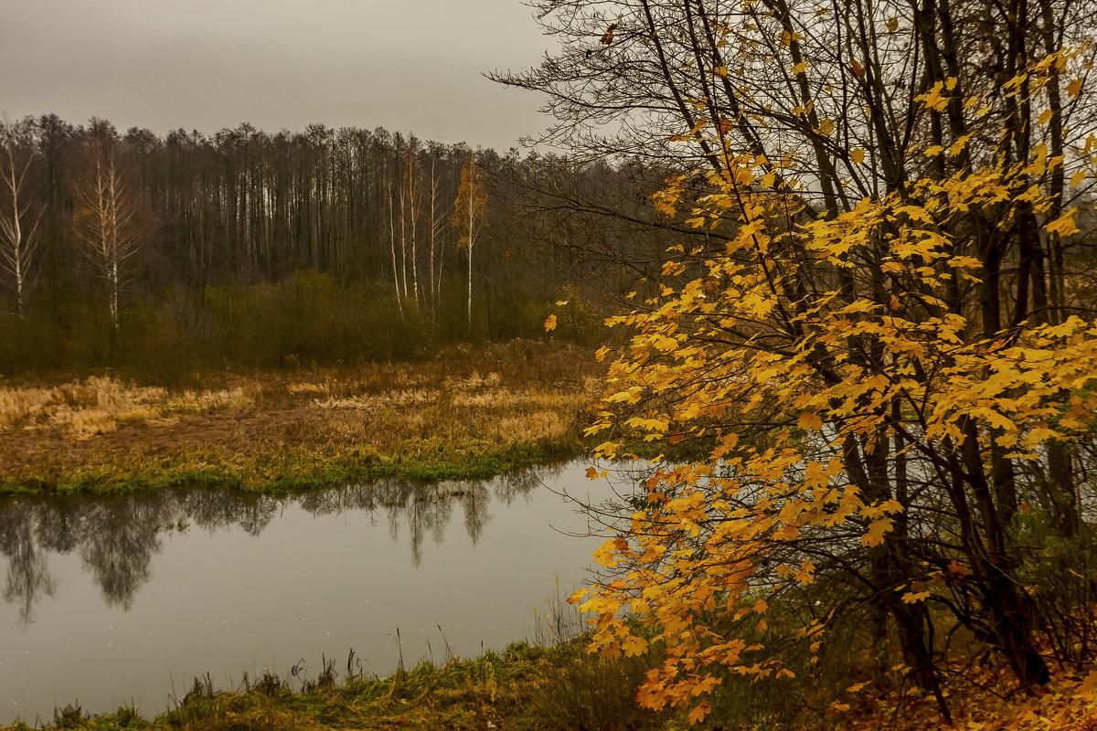 Осень - Николай Климович