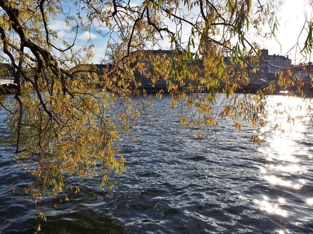 Осеннее настроение - Swetlana V