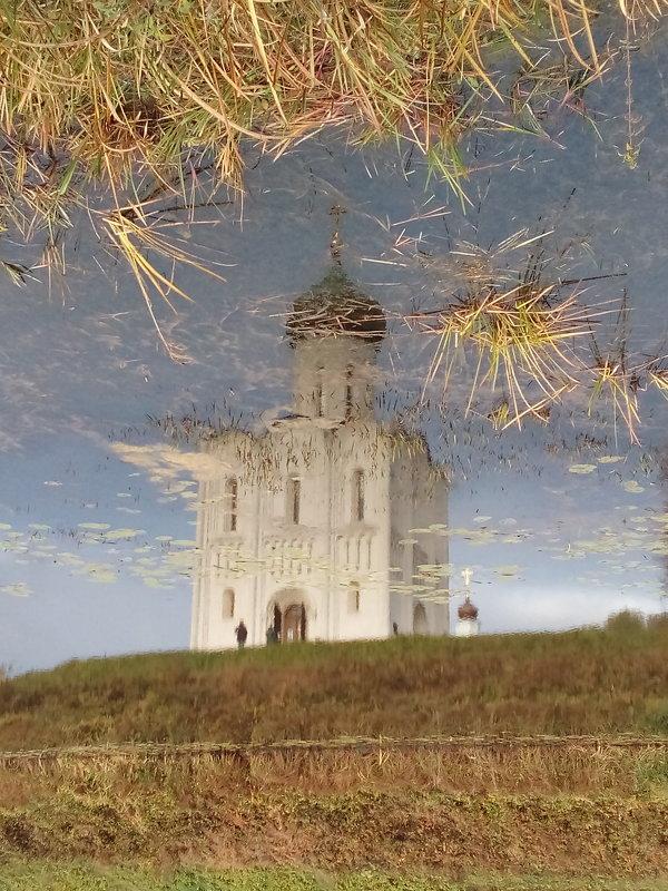 Отраженье - Евгения Куприянова