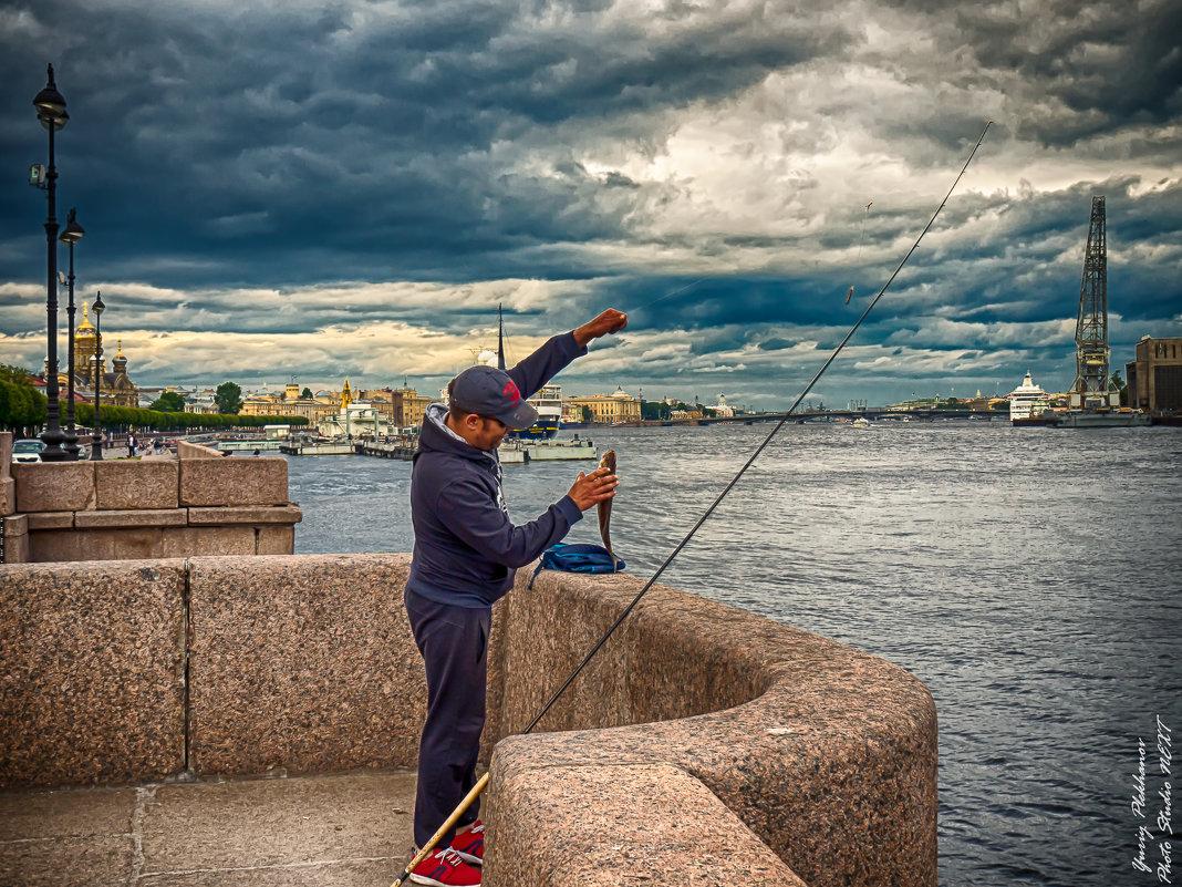 Питер рыба в Неве есть - Юрий Плеханов