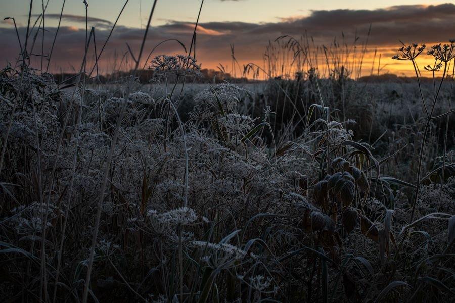 Первый мороз... - Anna Klaos