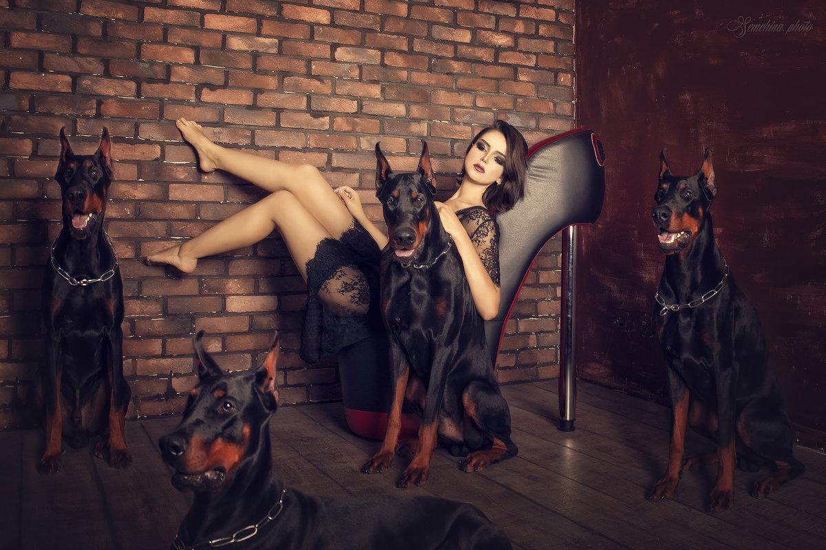 Доберманы - Marina Semyokhina
