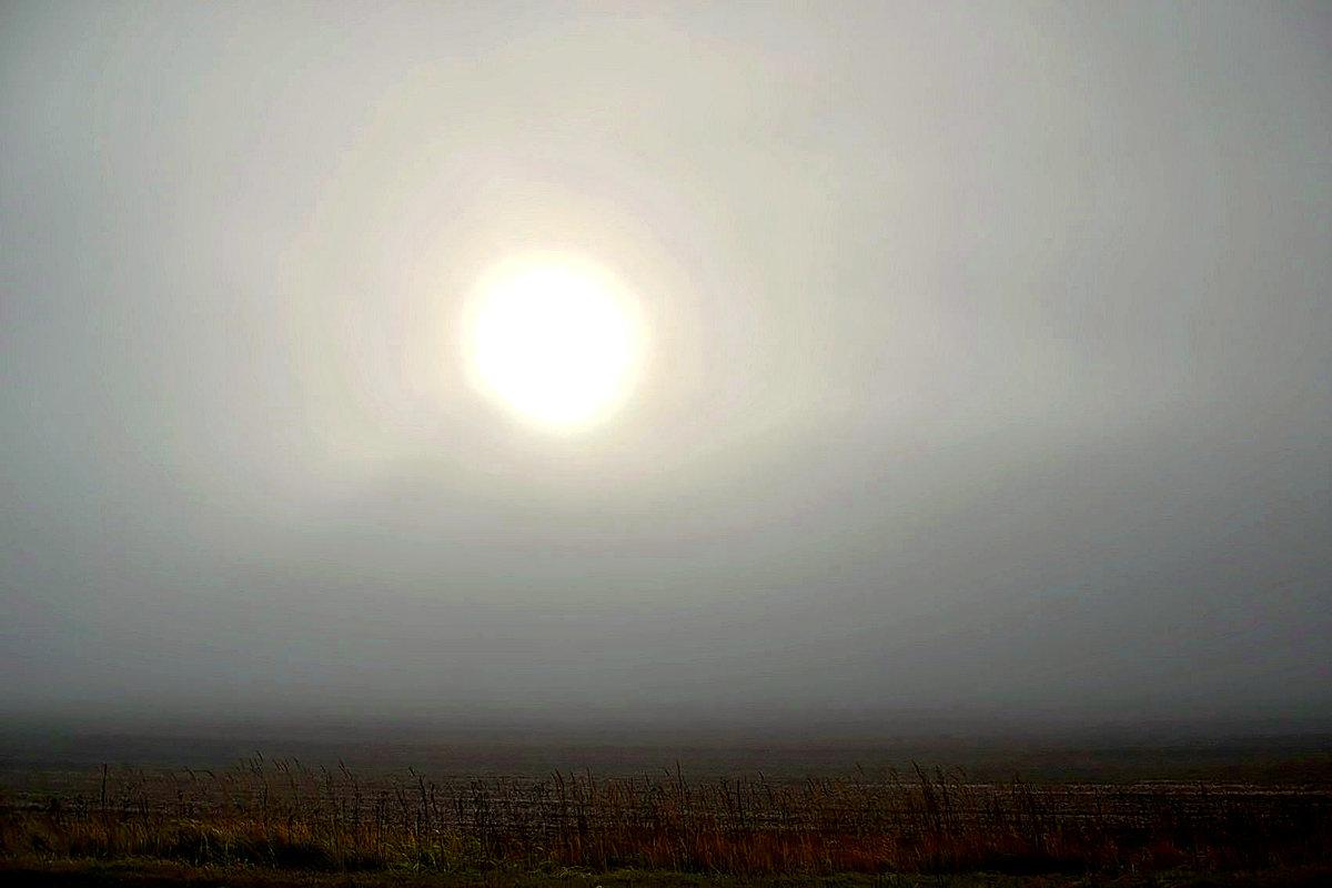Ноябрьский туман. - Михаил Столяров