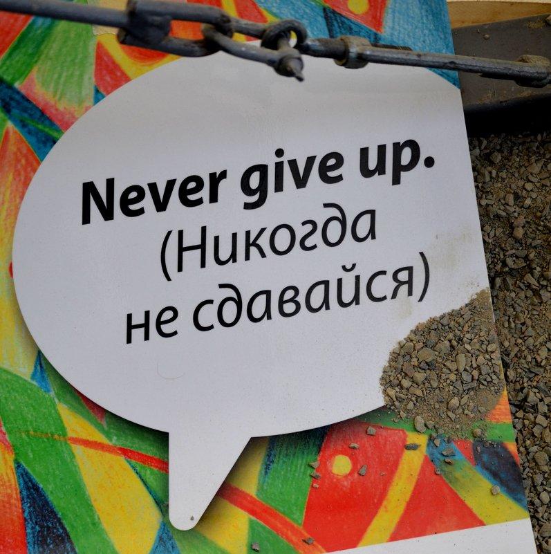 мотиватор - Татьяна Голубева