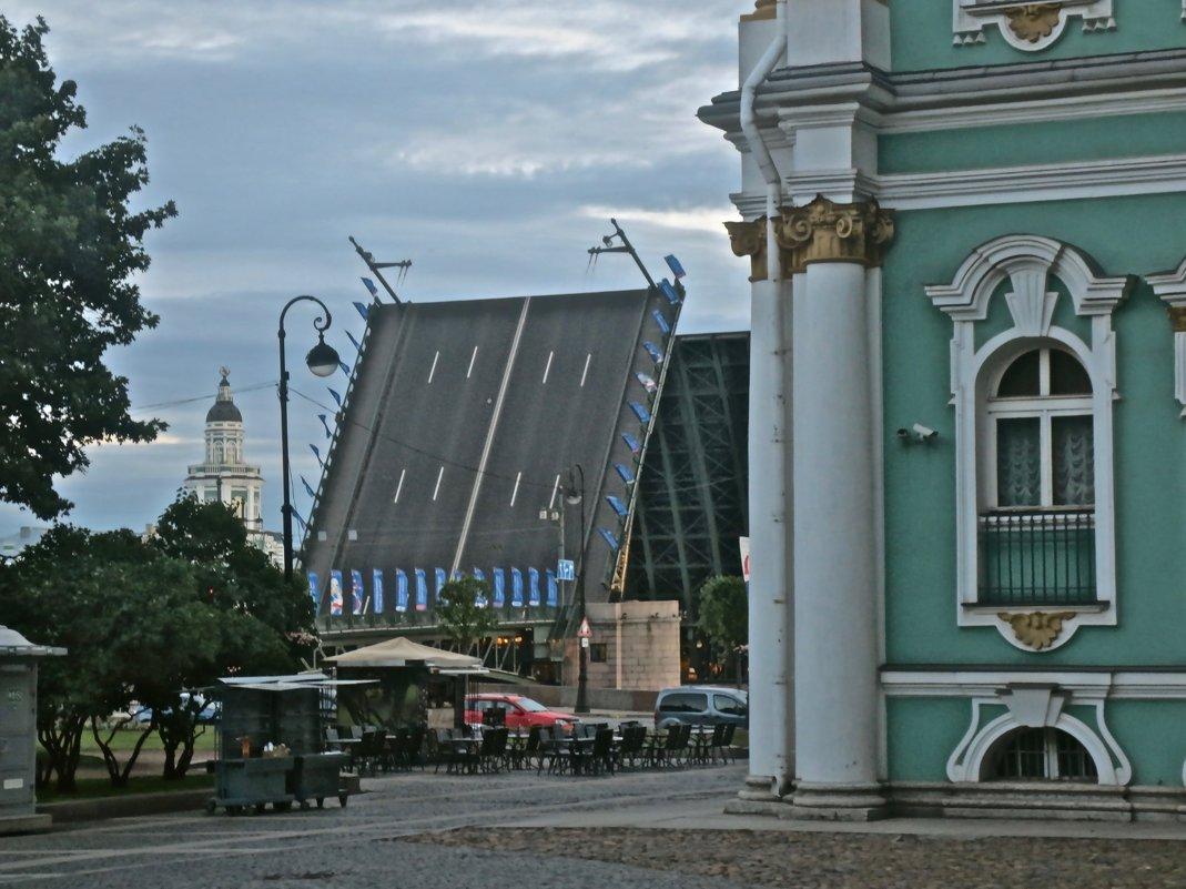 Дворцовый мост вертикально - Елена