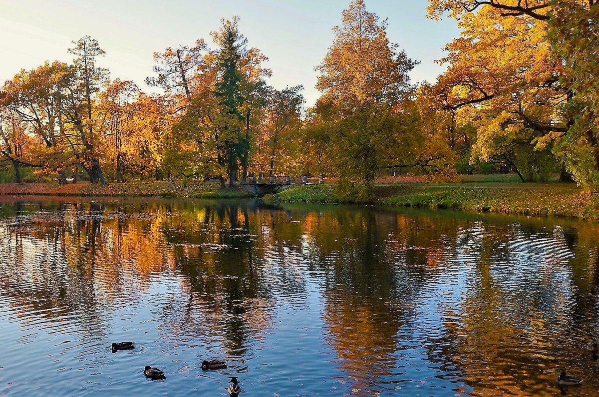 Закат над прудами Озерки... - Sergey Gordoff